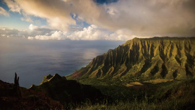 ハワイアンの言葉