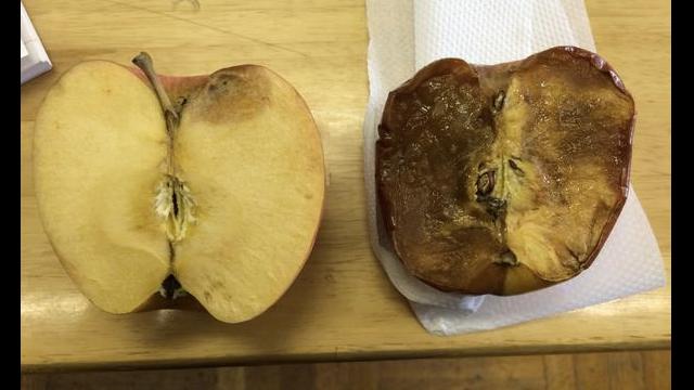 腐ったりんご